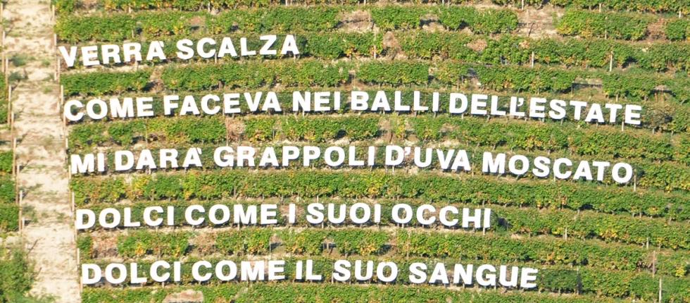 """Castiglione Tinella apre il suo Parco Panoramico-Letterario """"Versi in Vigna"""" e diventa """"Il Paese delle Vigne Scritte""""."""