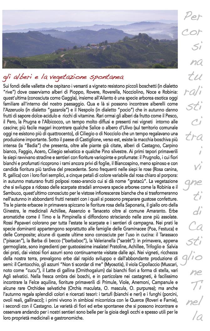 I sentieri - Pagina 5.