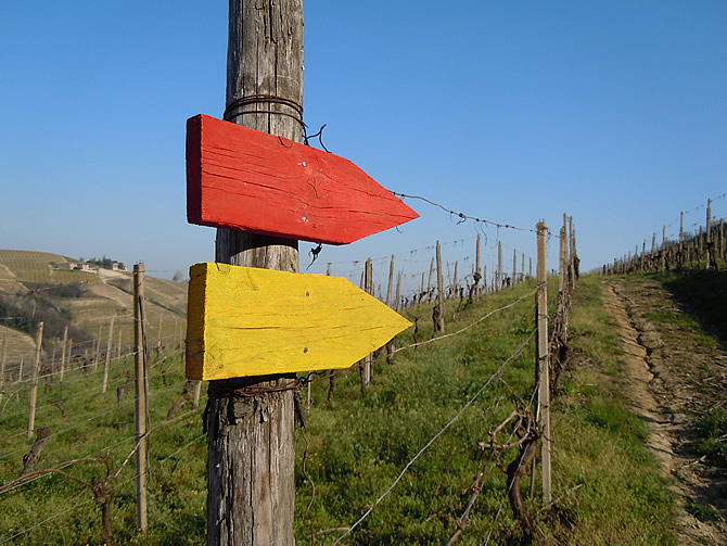 I sentieri naturalistici di Castiglione Tinella.